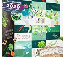 Boxiland Saatgut Adventskalender 2020
